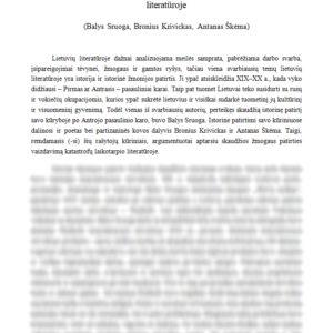 Skaudžios žmogaus patirties vaizdavimas katastrofų laikotarpio literatūroje (Balys Sruoga, Bronius Krivickas, Antanas Škėma)