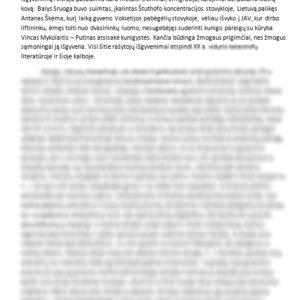 Kūrėjas ir kūryba lietuvių literatūroje (Antanas Škėma, Vincas Mykolaitis-Putinas, Balys Sruoga)